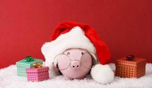 Holiday Debt Pig